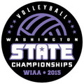 State Volleyball 2015 Pin