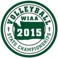 State Volleyball Patch 2015