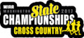 WIAA 2017 State Cross Country Pin