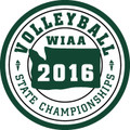 State Volleyball Patch 2016