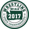 2017 State  Wrestling Patch
