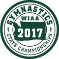 2017 State  Gymnastics Patch