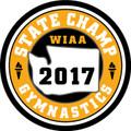 2017 Gymnastics Champ Patch