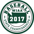 State Baseball 2017 Patch