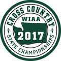 2017 State Cross Country Patch