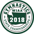 2018 State Gymnastics Patch