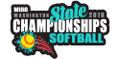 State Softball Pin 2018