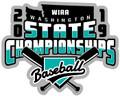 WIAA 2019 State Baseball Pin