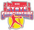 WIAA 2019 State Softball Pin