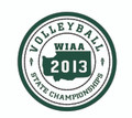 2013 State Patch - Volleyball