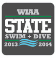 State Swim Dive Pin 2013-14