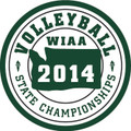 State Volleyball Patch 2014