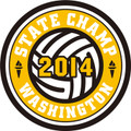 State Champ Volleyball Patch 2014
