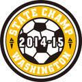 State 2014-15 Soccer Champ Patch