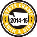 WIAA State Swim & Dive Champ Patch 2014-15