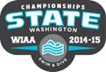WIAA State Swim & Dive Pin 2014-15