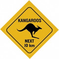 Australian kangaroo road sign sticker