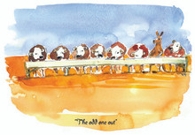 Why does this kangaroo feel the odd one out!
