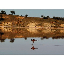 Great photograph, nice Australian greeting card