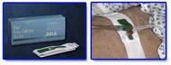 Foley Catheter Holder