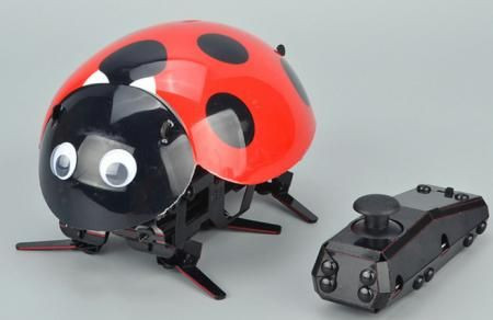 RC Intelligent Lady Bug Robot Kit --  Ladybug Robot Fun
