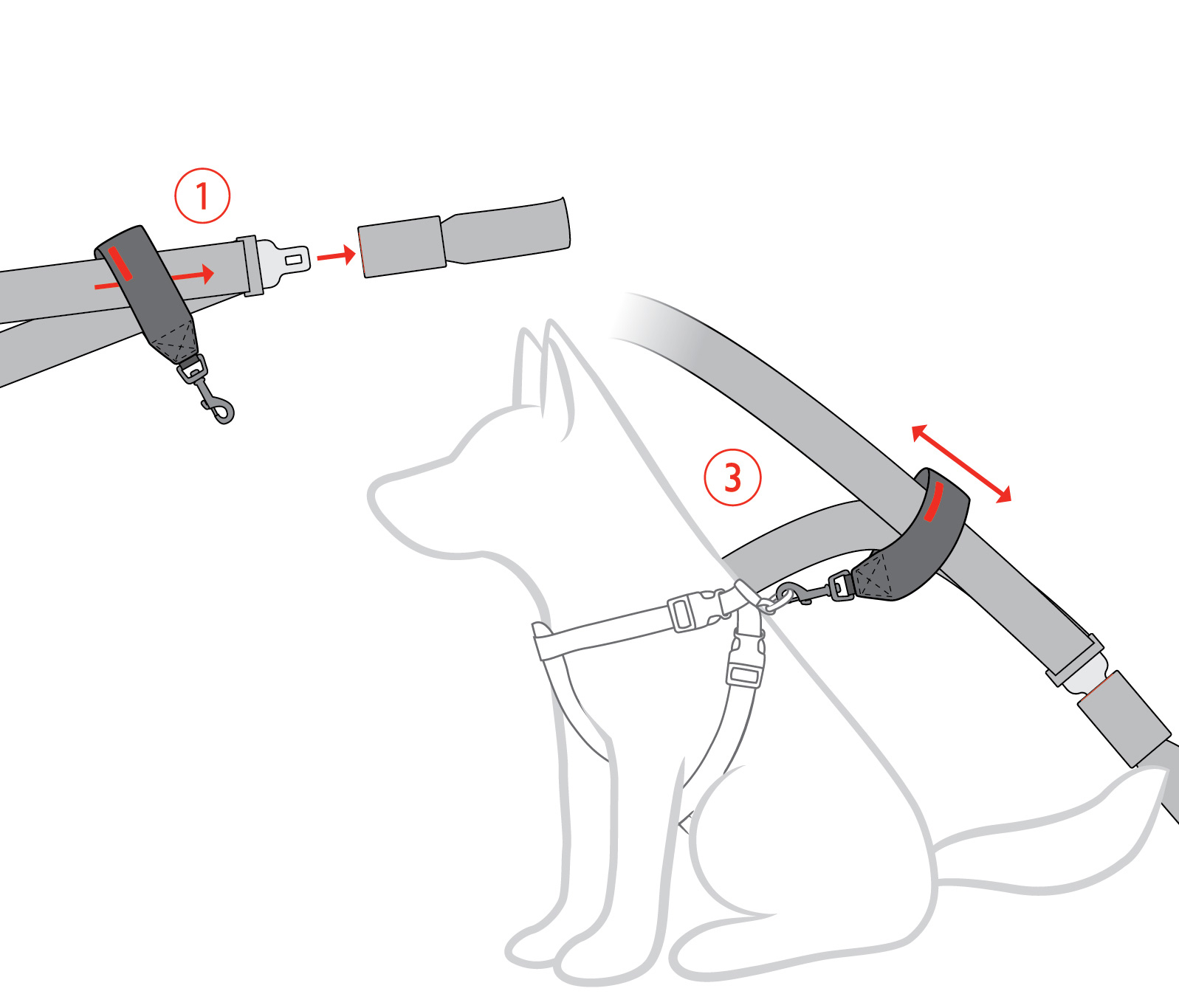 ezydog-car-restraint-fitting-instructions.jpg