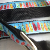 "FLIPFLOPS Designer Dog Collar & Leash. 15""-21"""