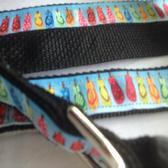 "FLIPFLOPS Designer Dog Collar & Leash. 15""-21"""