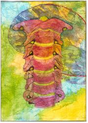 Cervical Spine Print