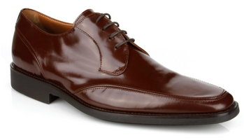 Michael Toschi Lorenzo Burgundy Brush Off Shoes