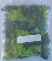 JAVIS Assorted Green Lichen