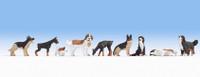 NOCH 15717 Dogs 00/HO Model Animals