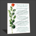Rosebud Program Easel with Directions - SPANISH