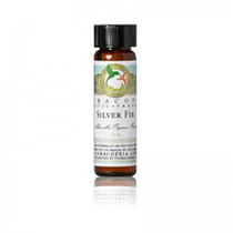 Silver Fir Essential Oil