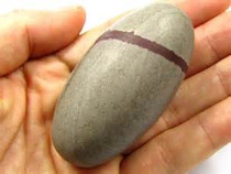 Shiva Lingam Rock Specimen 3 Inch