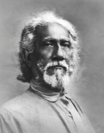 Swami Sri Yukteswar -  Sideview Photo  5x7