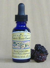 Flower Essence - Blackberry