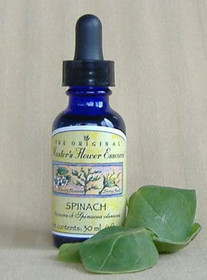 Flower Essence - Spinach