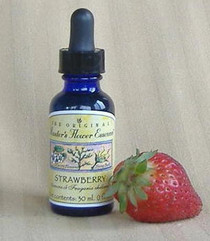 Flower Essence - Strawberry