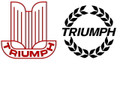 Triumph Decal. 10 inches wide.
