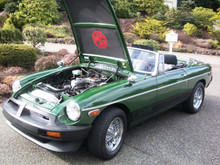 MGB Bonnet Liner Heat Shield With or Without MG Emblem