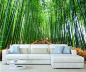 Bamboo Trees Wall Mural