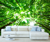 Green Forest View to Sky Wall Mural