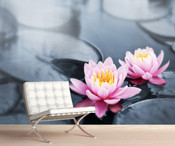 Lotus Water Lily Flowers Wall Mural
