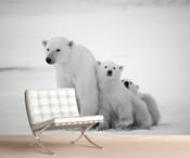 Arctic Polar Bear Wall Mural