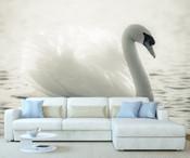 White Swan Wall Mural
