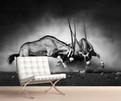 Antelope Oryx Wall Mural