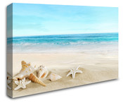 Seashells Beach Ocean Wall Art Canvas 8998-1004