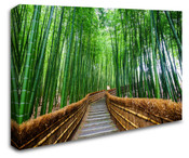 Bamboo Pathway Wall Art Canvas 8998-1011