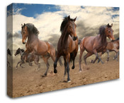 Wild Horses Wall Art Canvas 8998-1113
